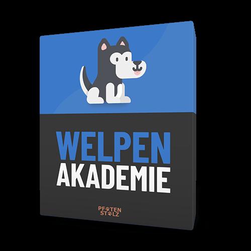 Pfotenstolz Online Welpen-Akademie